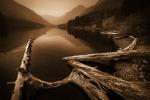 Trout-Lake(2)